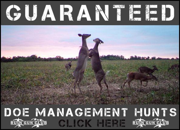 Doe Hunts